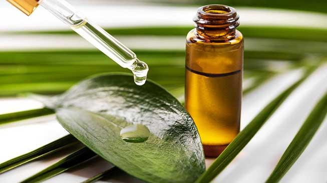 Minyak Kelapa & Tea Tree Oil